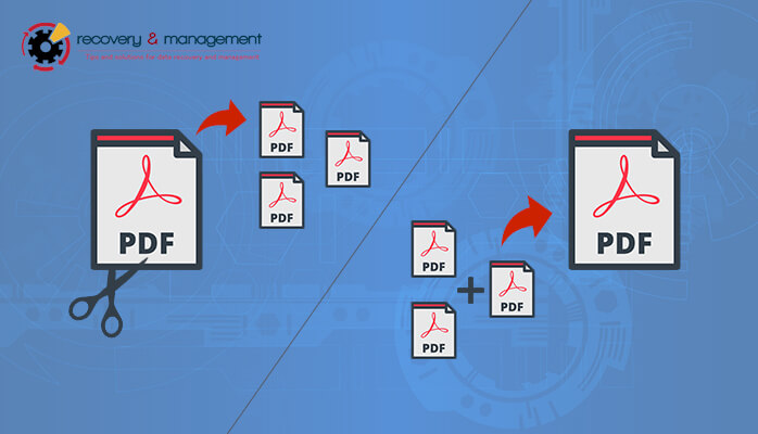 PDF Management Archives - Recovery & Management