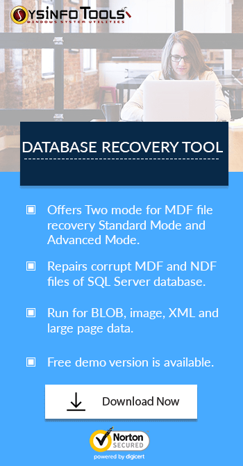 Database Recovery Tool